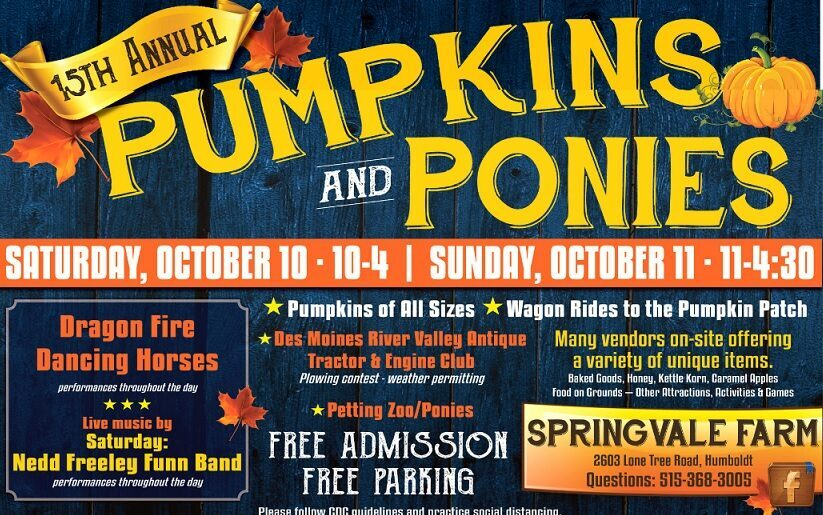 Pumpkins & Ponies - Springvale Farms @ Pumpkins & Ponies